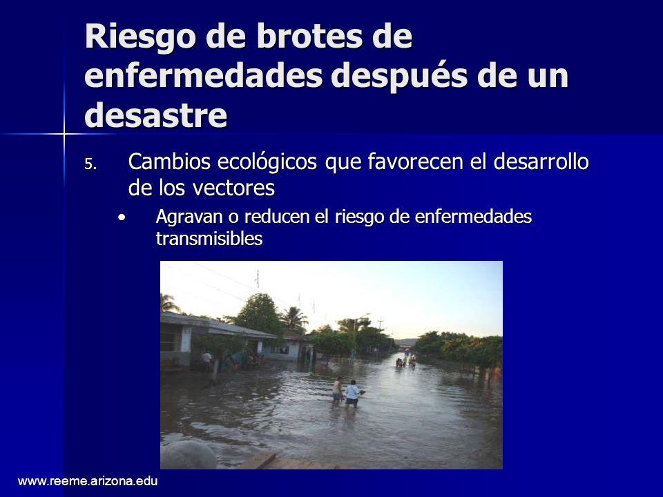 www.reeme.arizona.edu Riesgo de brotes de enfermedades después de un desastre 5. Cambios ecológicos que favorecen el desarrollo de los vectores Agrava