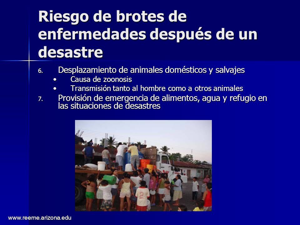 www.reeme.arizona.edu Riesgo de brotes de enfermedades después de un desastre 6. Desplazamiento de animales domésticos y salvajes Causa de zoonosisCau