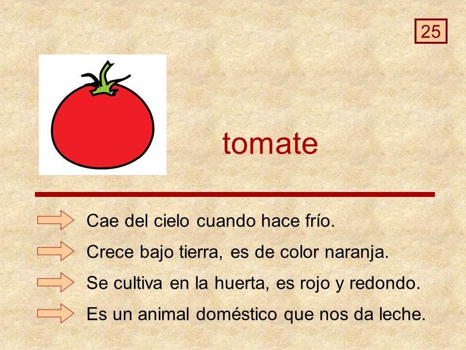 tomate Es un animal doméstico que nos da leche.Cae del cielo cuando hace frío.