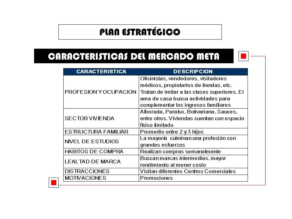 PLAN ESTRATÉGICO CARACTERISTICAS DEL MERCADO META