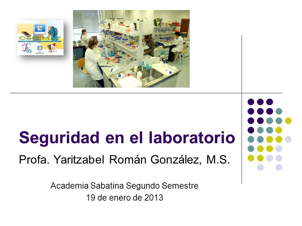 Seguridad en el laboratorio Profa. Yaritzabel Román González, M.S. Academia Sabatina Segundo Semestre 19 de enero de 2013