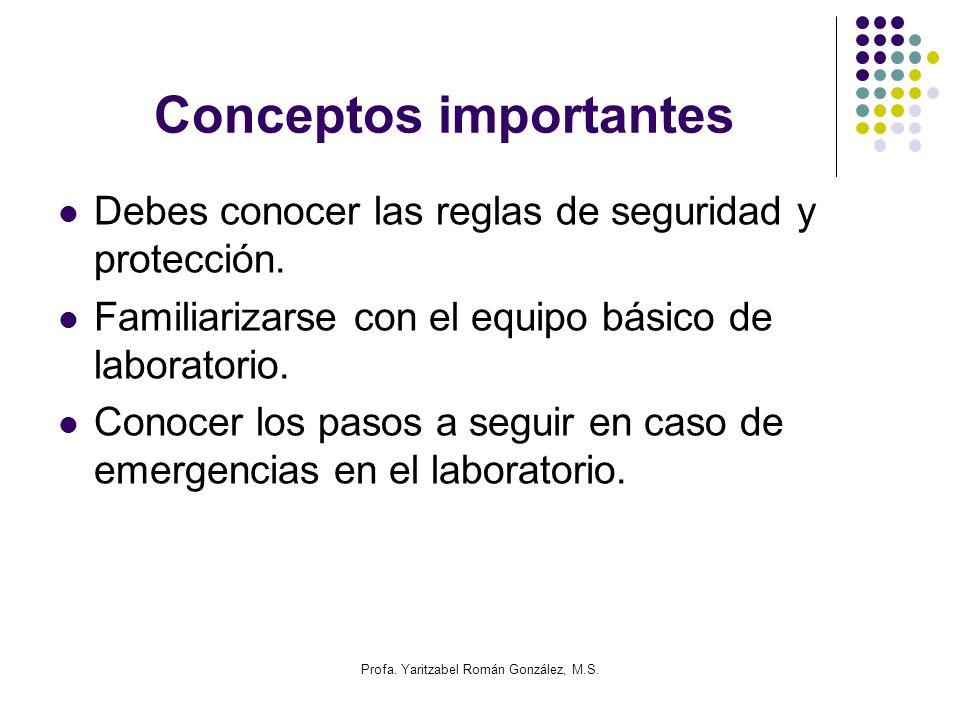Profa. Yaritzabel Román González, M.S. Conceptos importantes Debes conocer las reglas de seguridad y protección. Familiarizarse con el equipo básico d