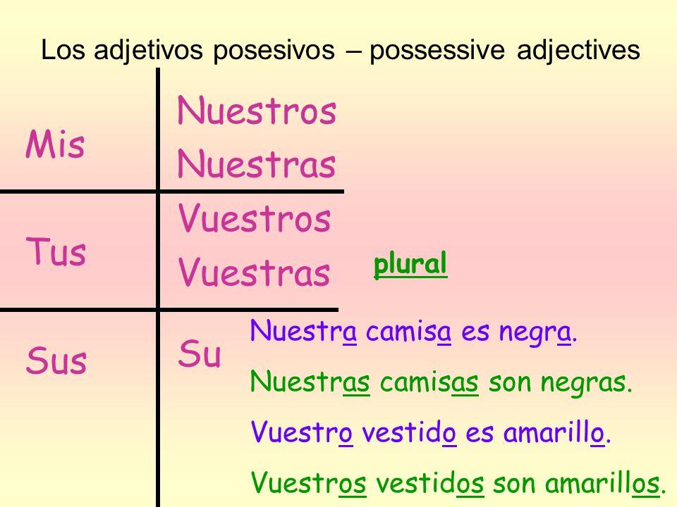 Los adjetivos posesivos – possessive adjectives Mis Tus Sus Nuestros Nuestras Vuestros Vuestras Su plural Nuestra camisa es negra. Nuestras camisas so