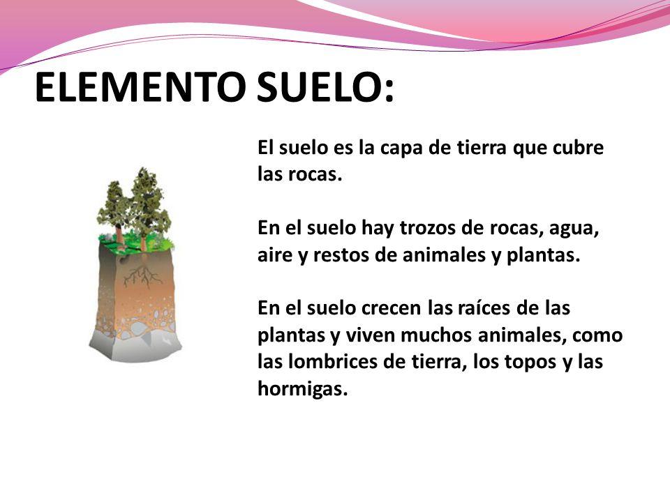 ELEMENTO SUELO: El suelo es la capa de tierra que cubre las rocas. En el suelo hay trozos de rocas, agua, aire y restos de animales y plantas. En el s