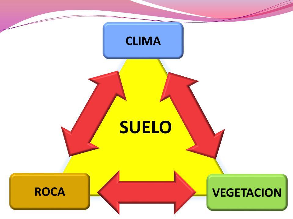 CLIMA VEGETACION ROCA SUELO