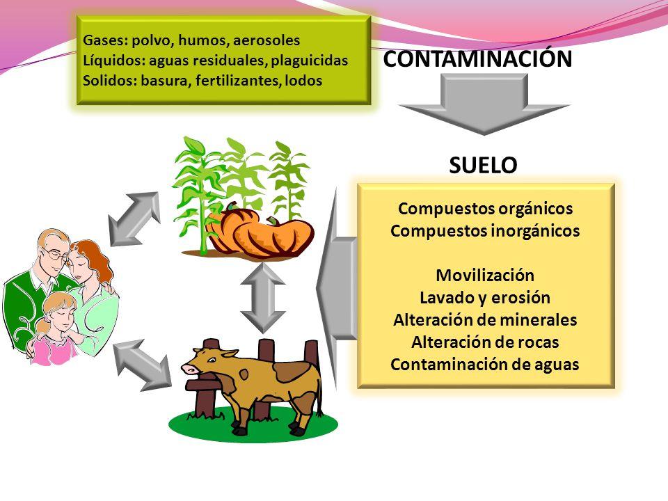 Gases: polvo, humos, aerosoles Líquidos: aguas residuales, plaguicidas Solidos: basura, fertilizantes, lodos CONTAMINACIÓN Compuestos orgánicos Compue