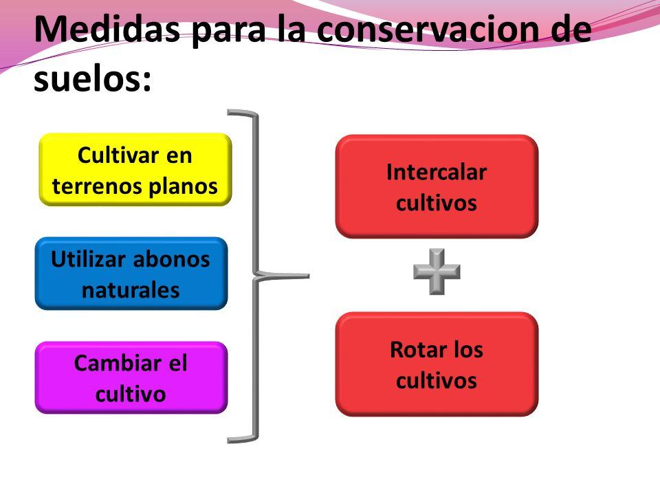 Medidas para la conservacion de suelos: Cultivar en terrenos planos Utilizar abonos naturales Cambiar el cultivo Intercalar cultivos Rotar los cultivo