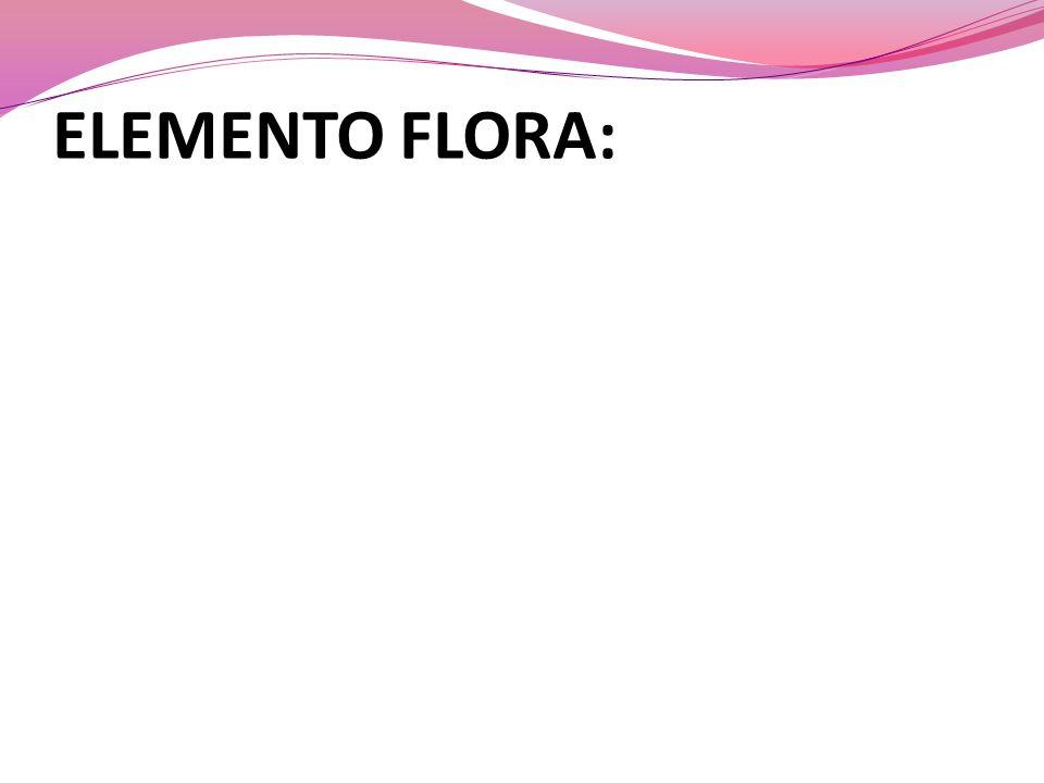 ELEMENTO FLORA: