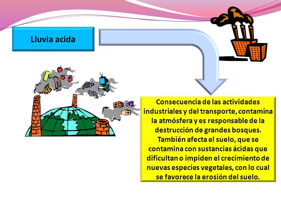 Lluvia acida Consecuencia de las actividades industriales y del transporte, contamina la atmósfera y es responsable de la destrucción de grandes bosqu