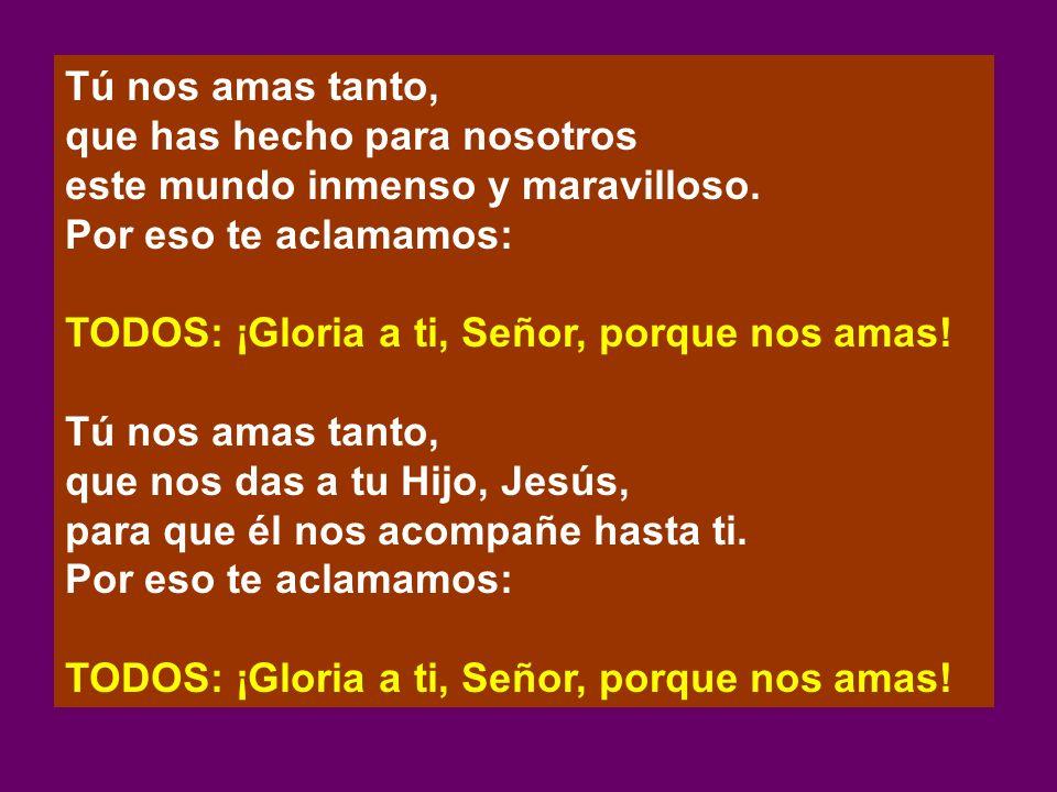 Tú nos amas tanto, que has hecho para nosotros este mundo inmenso y maravilloso. Por eso te aclamamos: TODOS: ¡Gloria a ti, Señor, porque nos amas! Tú