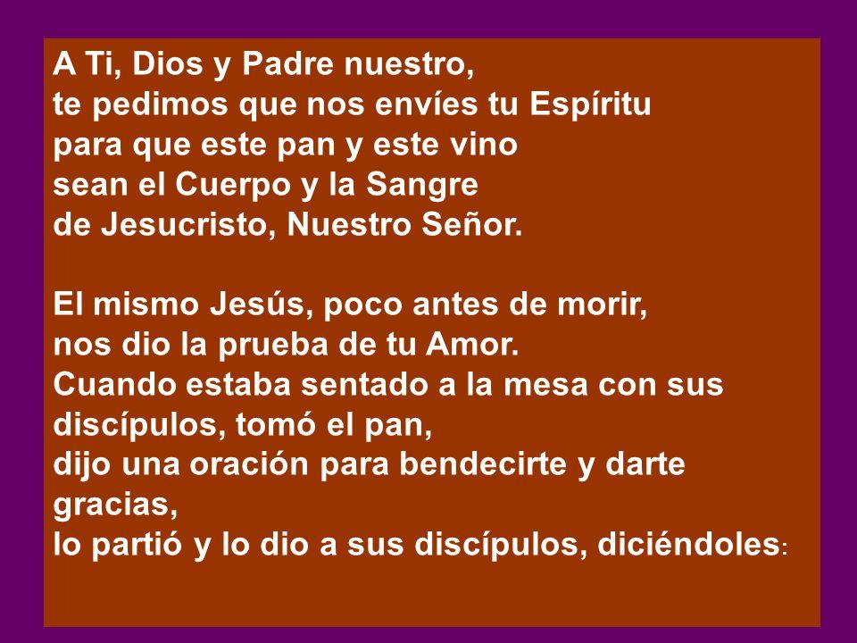 A Ti, Dios y Padre nuestro, te pedimos que nos envíes tu Espíritu para que este pan y este vino sean el Cuerpo y la Sangre de Jesucristo, Nuestro Seño