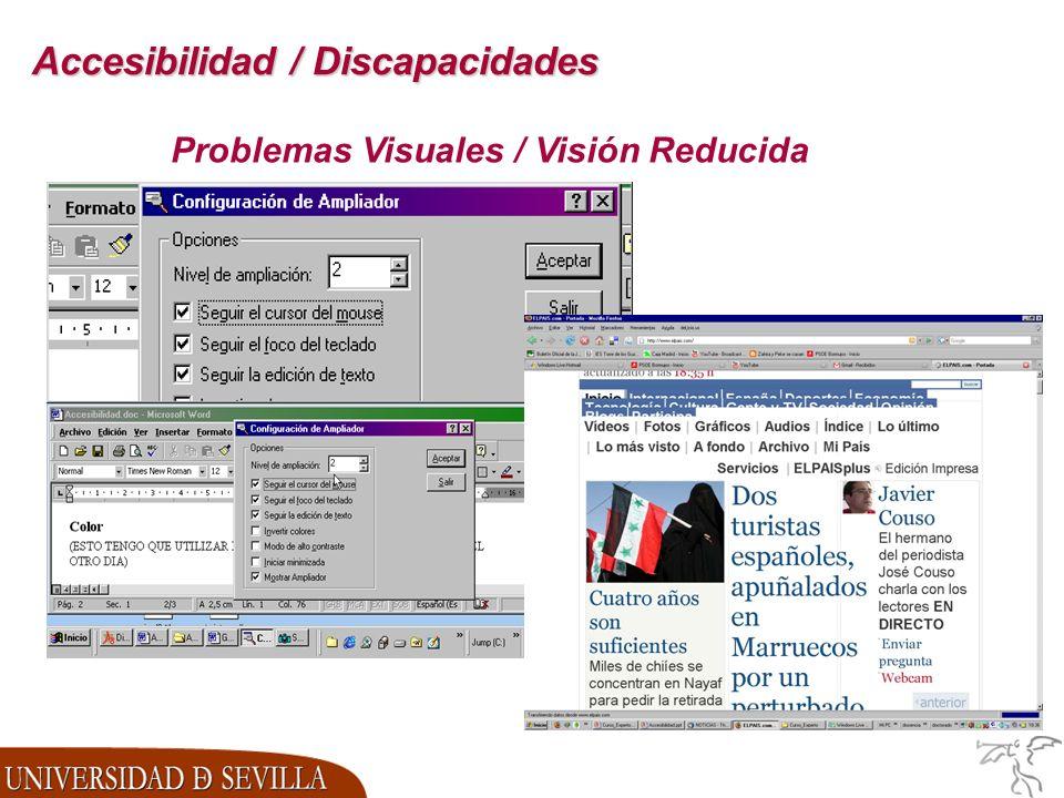 Accesibilidad / Discapacidades Problemas Visuales / Visión Reducida