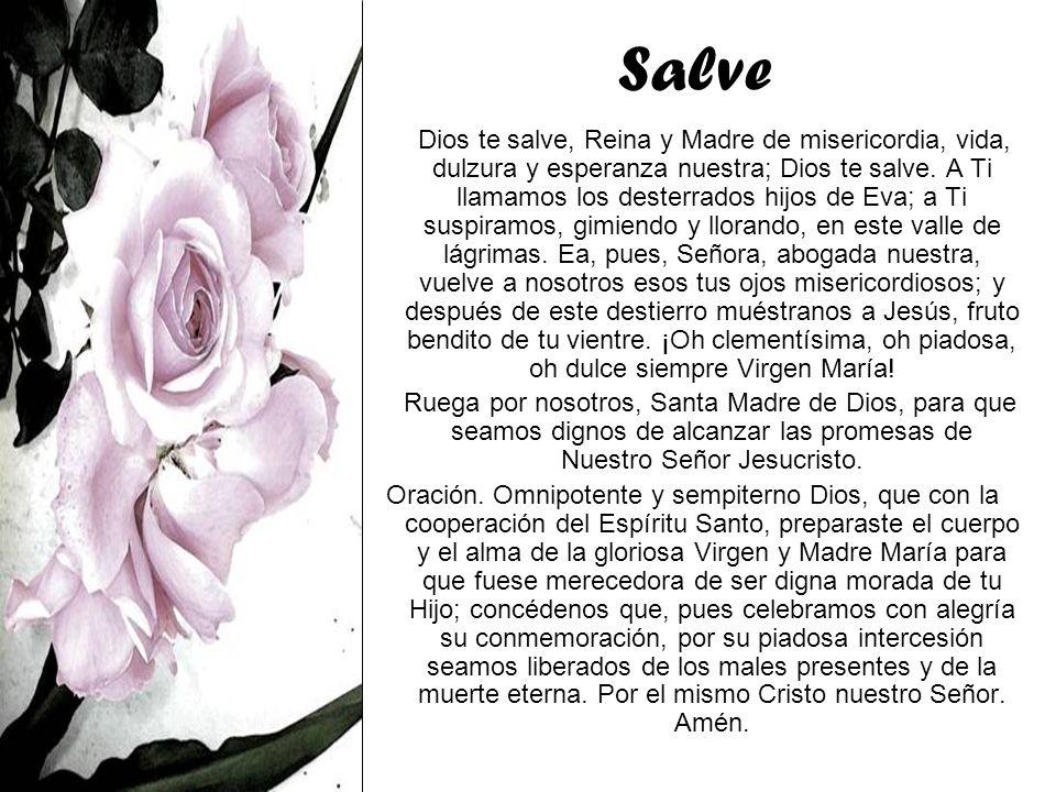 Salve Dios te salve, Reina y Madre de misericordia, vida, dulzura y esperanza nuestra; Dios te salve. A Ti llamamos los desterrados hijos de Eva; a Ti