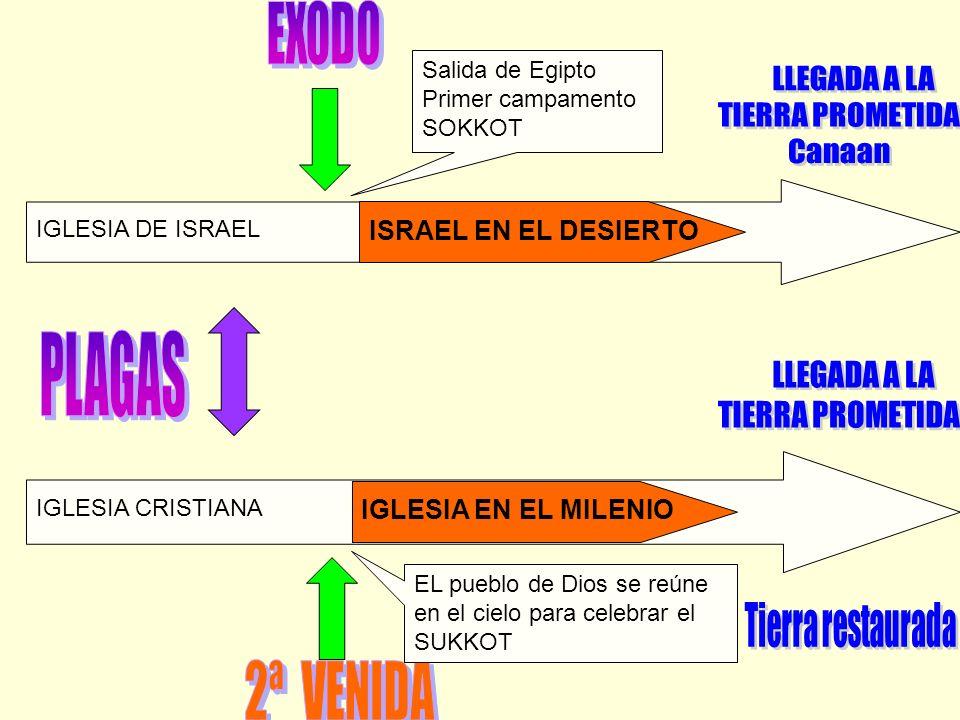 IGLESIA DE ISRAEL IGLESIA CRISTIANA Salida de Egipto Primer campamento SOKKOT EL pueblo de Dios se reúne en el cielo para celebrar el SUKKOT ISRAEL EN
