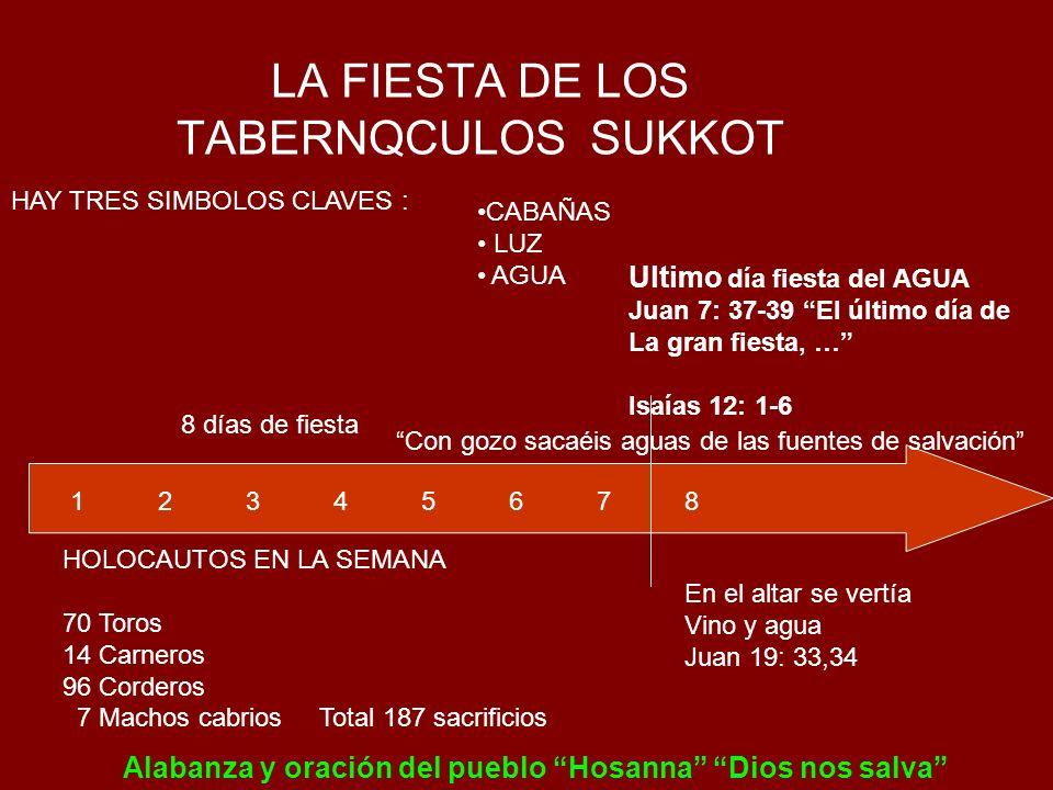 LA FIESTA DE LOS TABERNQCULOS SUKKOT HAY TRES SIMBOLOS CLAVES : CABAÑAS LUZ AGUA 8 días de fiesta 1 2 3 4 5 6 7 8 Ultimo día fiesta del AGUA Juan 7: 3