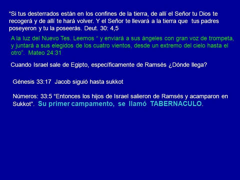 IGLESIA DE ISRAEL IGLESIA CRISTIANA Salida de Egipto Primer campamento SOKKOT EL pueblo de Dios se reúne en el cielo para celebrar el SUKKOT ISRAEL EN EL DESIERTO IGLESIA EN EL MILENIO