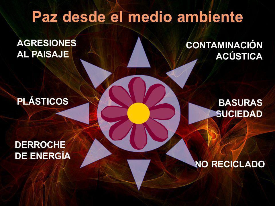 Paz desde el medio ambiente AGRESIONES AL PAISAJE DERROCHE DE ENERGÍA CONTAMINACIÓN ACÚSTICA BASURAS SUCIEDAD PLÁSTICOS NO RECICLADO
