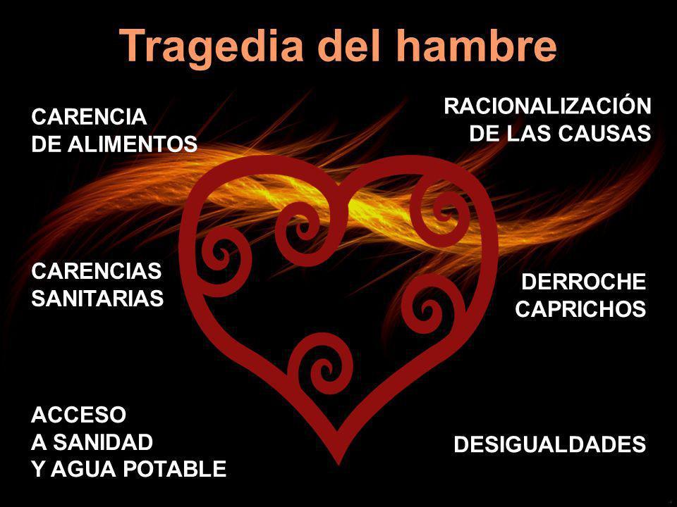 Tragedia del hambre CARENCIA DE ALIMENTOS RACIONALIZACIÓN DE LAS CAUSAS CARENCIAS SANITARIAS DERROCHE CAPRICHOS ACCESO A SANIDAD Y AGUA POTABLE DESIGU
