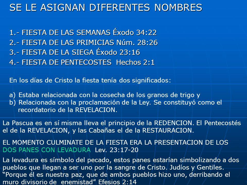 SE LE ASIGNAN DIFERENTES NOMBRES 1.- FIESTA DE LAS SEMANAS Éxodo 34:22 2.- FIESTA DE LAS PRIMICIAS Núm. 28:26 3.- FIESTA DE LA SIEGA Éxodo 23:16 4.- F