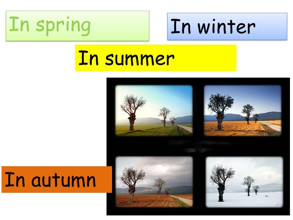 In spring In winter In autumn In summer