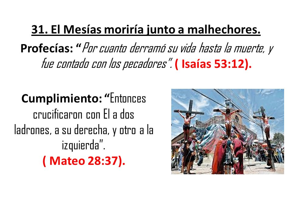 31. El Mesías moriría junto a malhechores. Profecías: Por cuanto derramó su vida hasta la muerte, y fue contado con los pecadores. ( Isaías 53:12). Cu