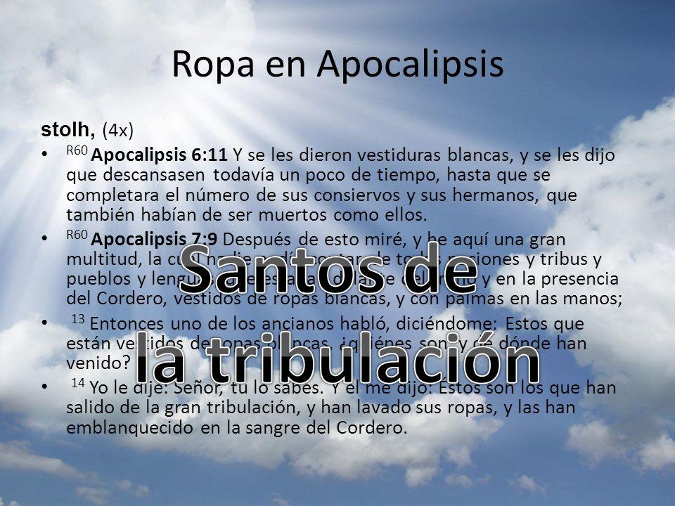Ropa en Apocalipsis stolh, (4x) R60 Apocalipsis 6:11 Y se les dieron vestiduras blancas, y se les dijo que descansasen todavía un poco de tiempo, hast