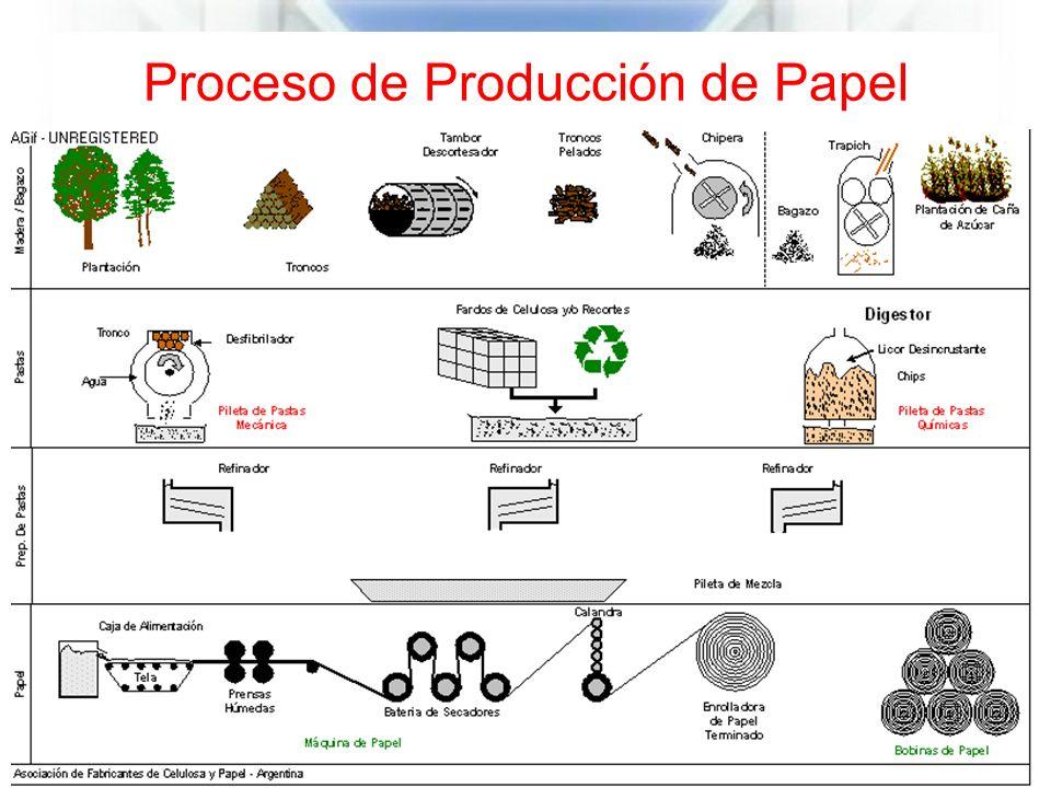 Proceso de Producción de Papel