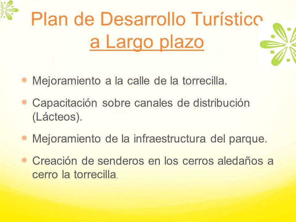 Mejoramiento a la calle de la torrecilla. Capacitación sobre canales de distribución (Lácteos). Mejoramiento de la infraestructura del parque. Creació