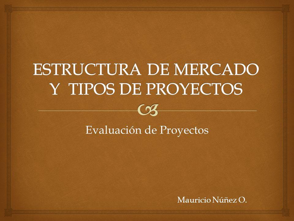 Evaluación de Proyectos Mauricio Núñez O.