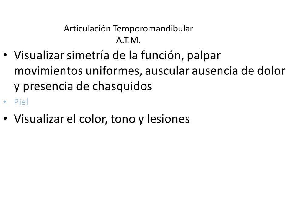 Articulación Temporomandibular A.T.M. Visualizar simetría de la función, palpar movimientos uniformes, auscular ausencia de dolor y presencia de chasq