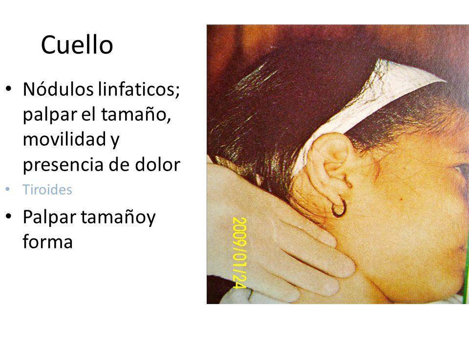Cuello Nódulos linfaticos; palpar el tamaño, movilidad y presencia de dolor Tiroides Palpar tamañoy forma