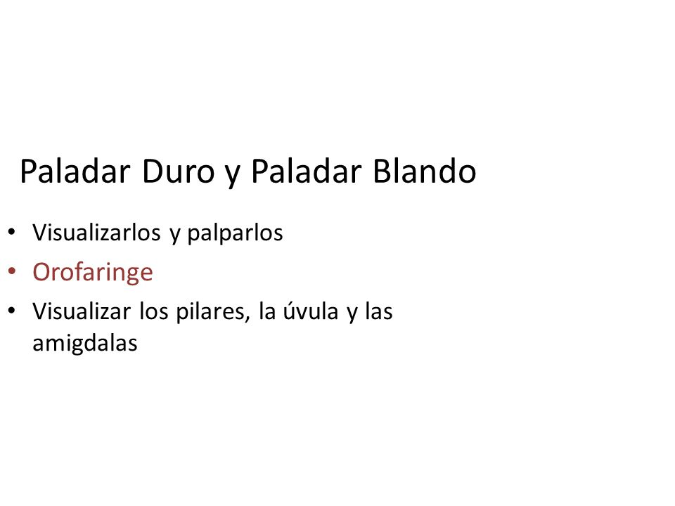 Paladar Duro y Paladar Blando Visualizarlos y palparlos Orofaringe Visualizar los pilares, la úvula y las amigdalas