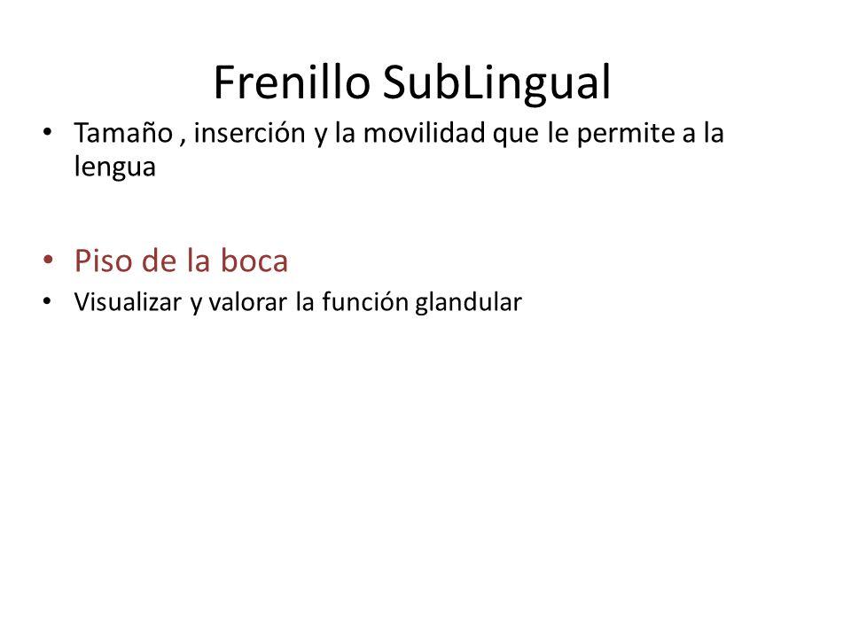Frenillo SubLingual Tamaño, inserción y la movilidad que le permite a la lengua Piso de la boca Visualizar y valorar la función glandular