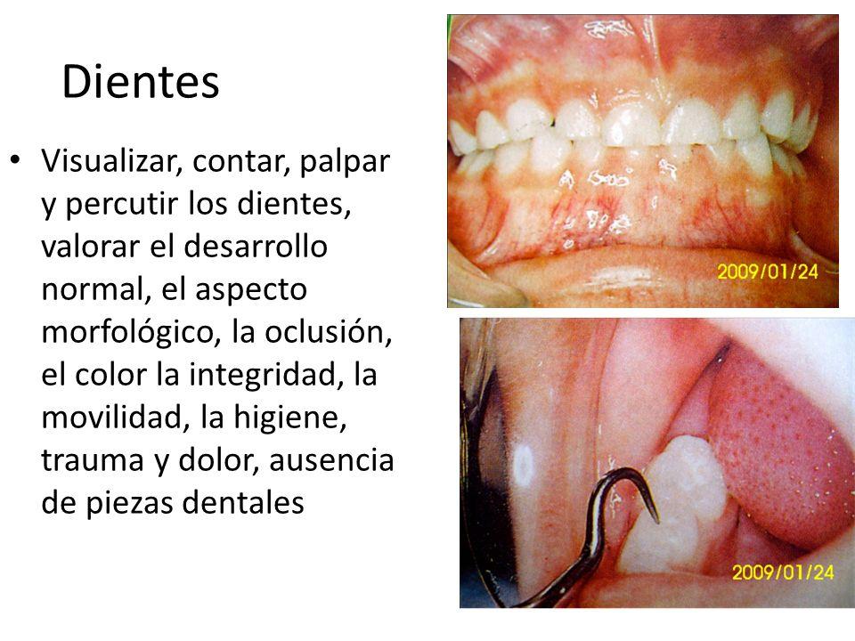 Dientes Visualizar, contar, palpar y percutir los dientes, valorar el desarrollo normal, el aspecto morfológico, la oclusión, el color la integridad,