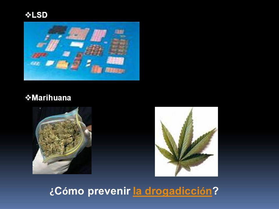 LSD Marihuana ¿ C ó mo prevenir la drogadicci ó n? la drogadicci ó n