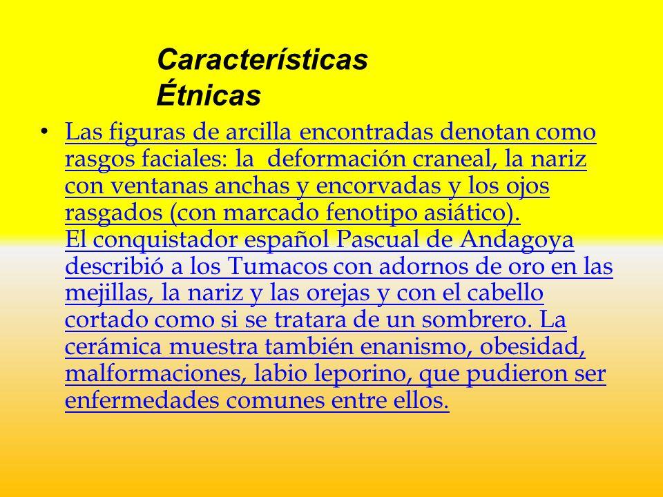 Características Sociales y Económicas de los Tumaco Las cerámicas prueban la existencia de una casta religiosa, indicando un complejo mundo espiritual, íntimamente ligado con la naturaleza, en el que las deidades eran personificadas por elementos de la fauna, como los jaguares y los saurios, principalmente.