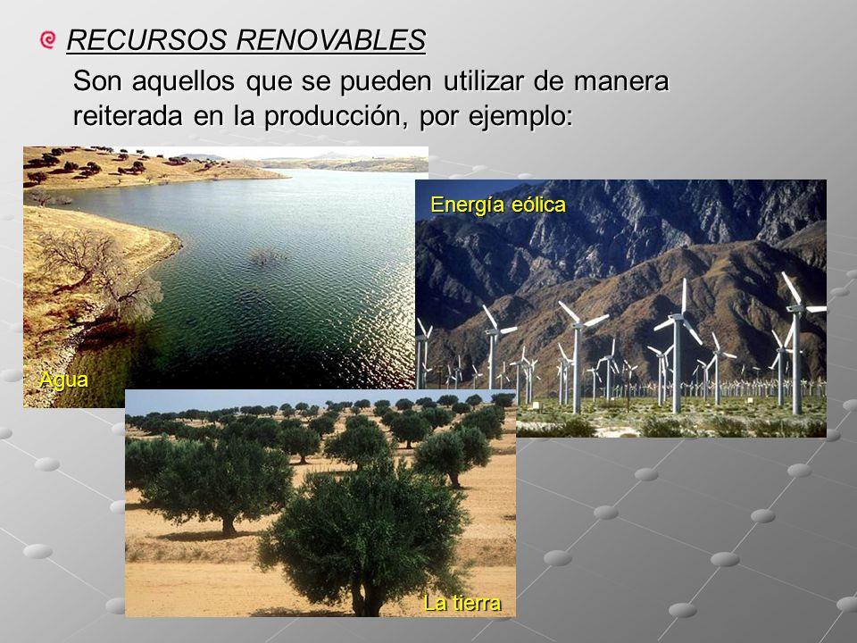 RECURSOS RENOVABLES Son aquellos que se pueden utilizar de manera reiterada en la producción, por ejemplo: Agua Energía eólica La tierra