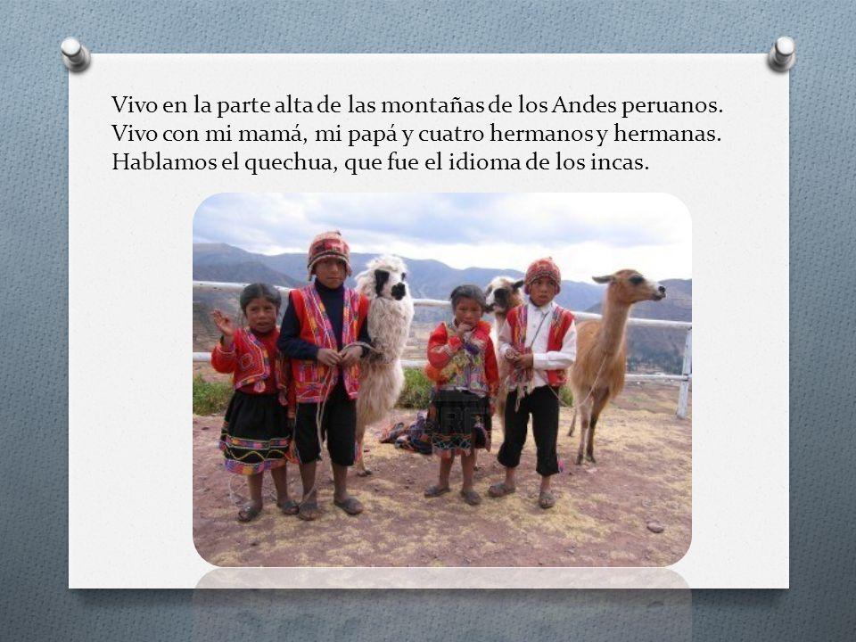Vivo en la parte alta de las montañas de los Andes peruanos. Vivo con mi mamá, mi papá y cuatro hermanos y hermanas. Hablamos el quechua, que fue el i