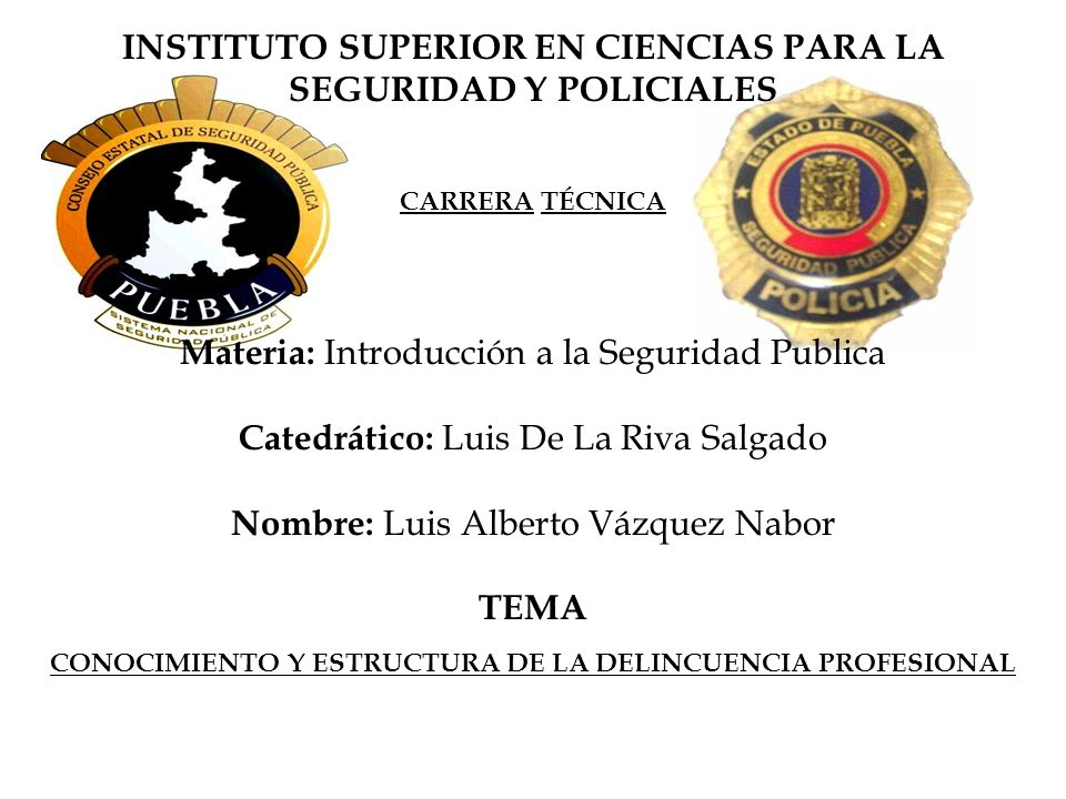 INSTITUTO SUPERIOR EN CIENCIAS PARA LA SEGURIDAD Y POLICIALES CARRERA TÉCNICA Materia: Introducción a la Seguridad Publica Catedrático: Luis De La Riv