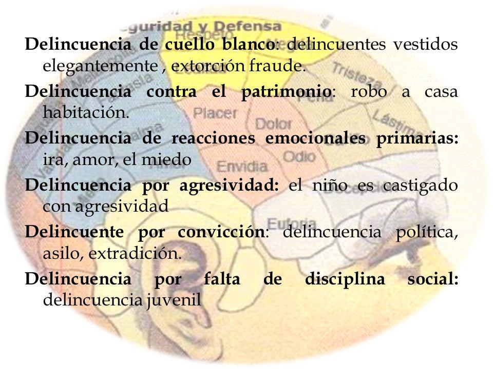 Delincuencia de cuello blanco : delincuentes vestidos elegantemente, extorción fraude. Delincuencia contra el patrimonio : robo a casa habitación. Del