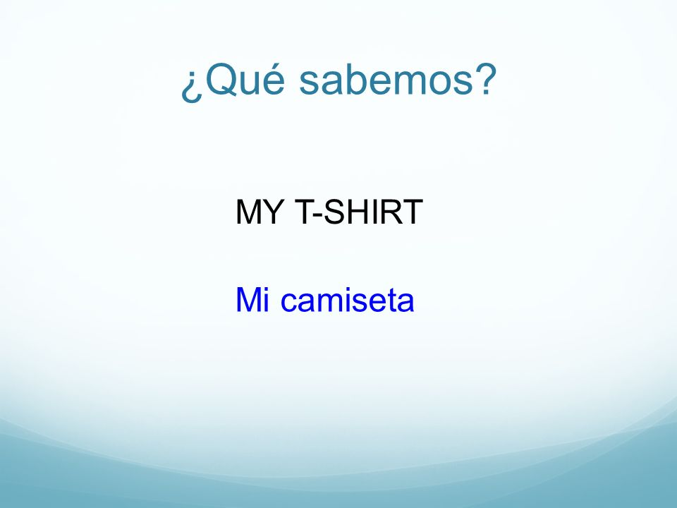¿Qué sabemos MY T-SHIRT Mi camiseta