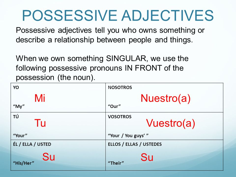 POSSESSIVE PRONOUNS Fill in the blanks with the correct possessive pronoun (the owner is in parenthesis) and then translate to English.