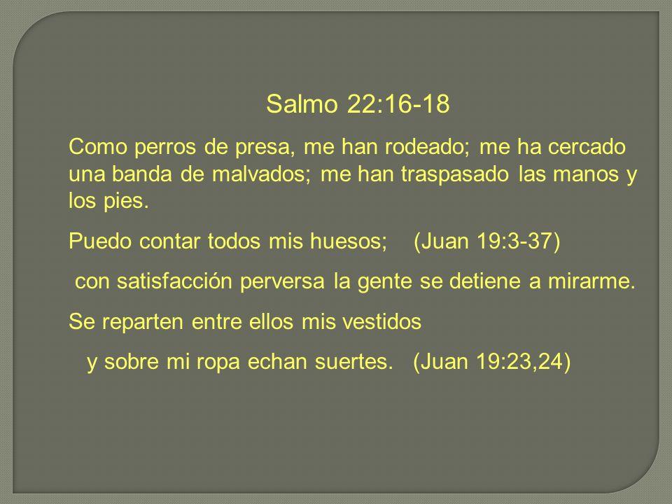 Salmo 22:16-18 Como perros de presa, me han rodeado; me ha cercado una banda de malvados; me han traspasado las manos y los pies. Puedo contar todos m