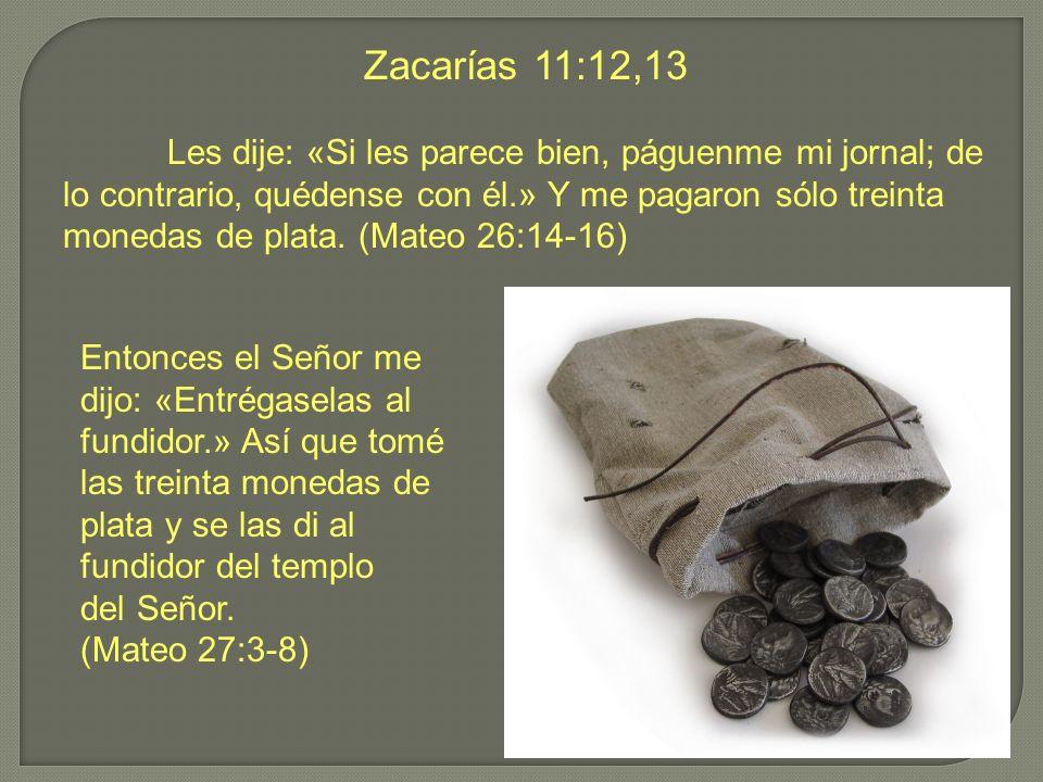 Zacarías 11:12,13 Les dije: «Si les parece bien, páguenme mi jornal; de lo contrario, quédense con él.» Y me pagaron sólo treinta monedas de plata. (M