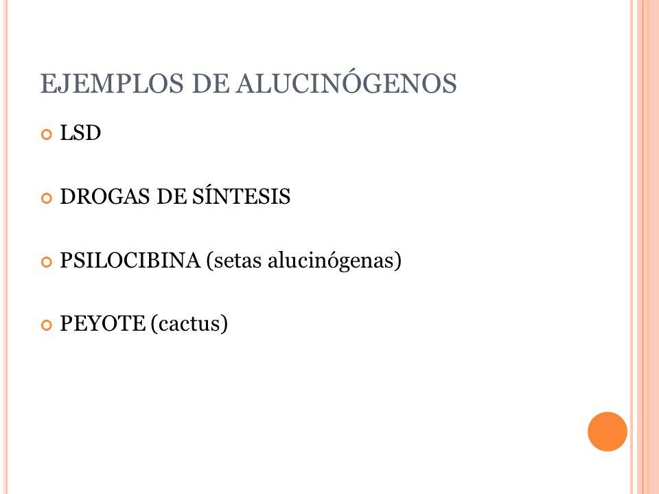 EJEMPLOS DE ALUCINÓGENOS LSD DROGAS DE SÍNTESIS PSILOCIBINA (setas alucinógenas) PEYOTE (cactus)