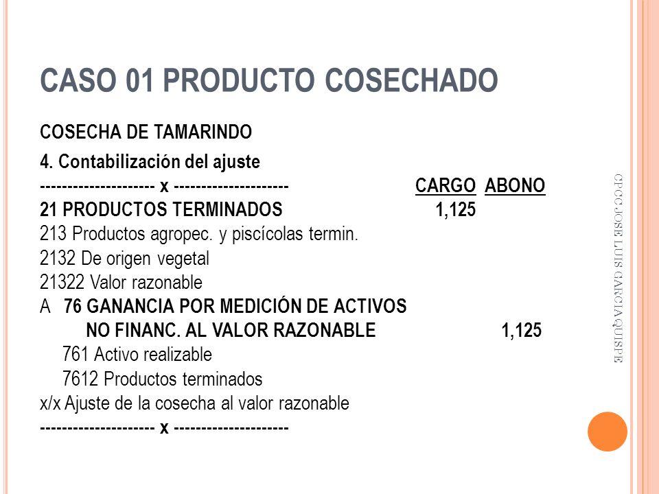 CASO 01 PRODUCTO COSECHADO COSECHA DE TAMARINDO 4. Contabilización del ajuste --------------------- x --------------------- CARGO ABONO 21 PRODUCTOS T