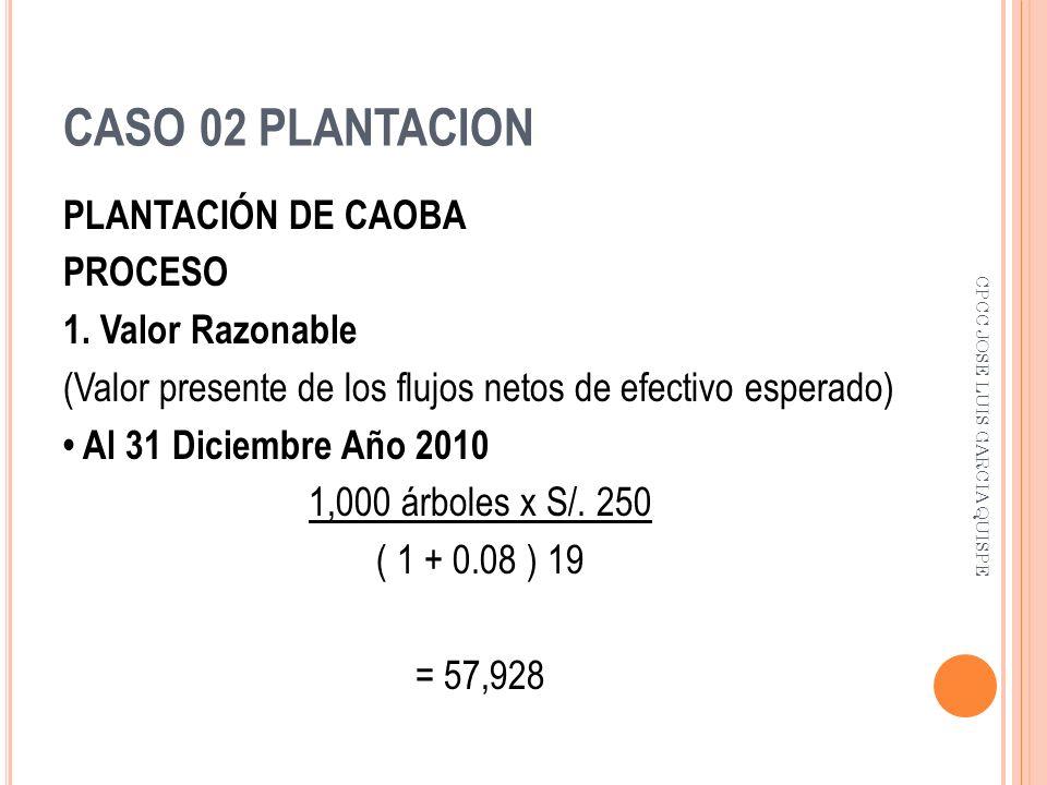 CASO 02 PLANTACION PLANTACIÓN DE CAOBA PROCESO 1. Valor Razonable (Valor presente de los flujos netos de efectivo esperado) Al 31 Diciembre Año 2010 1