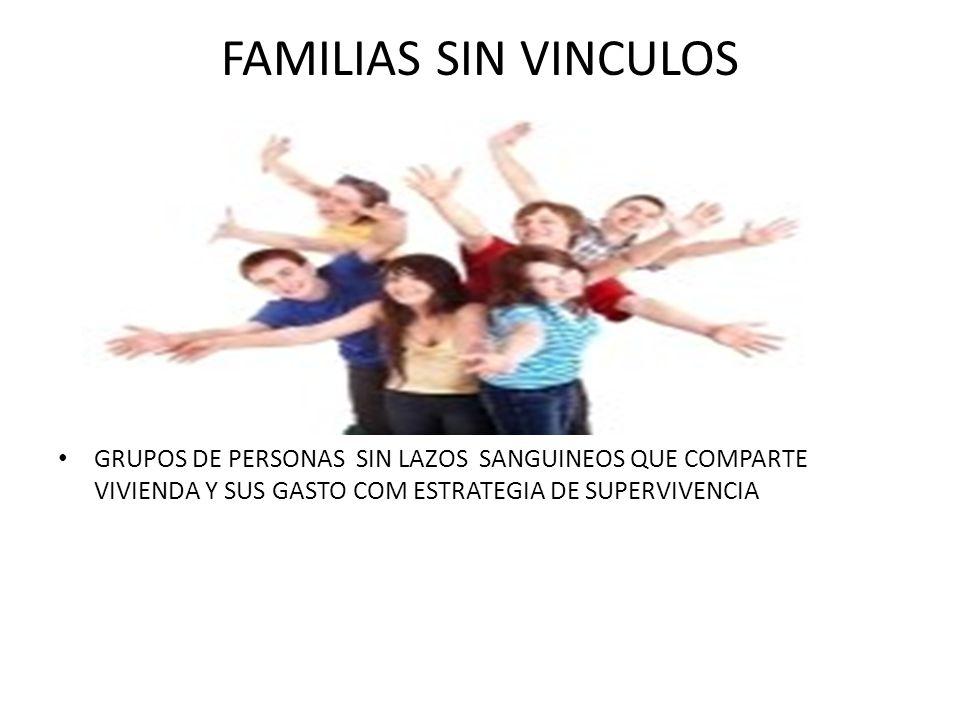 FUNCIONES DE LA FAMILIA BIOLOGICAS O DEMOGRAFICA EDUCADORA Y SOCIALIZADORA ECONOMICA DE SEGURIDAD RECREATIVA