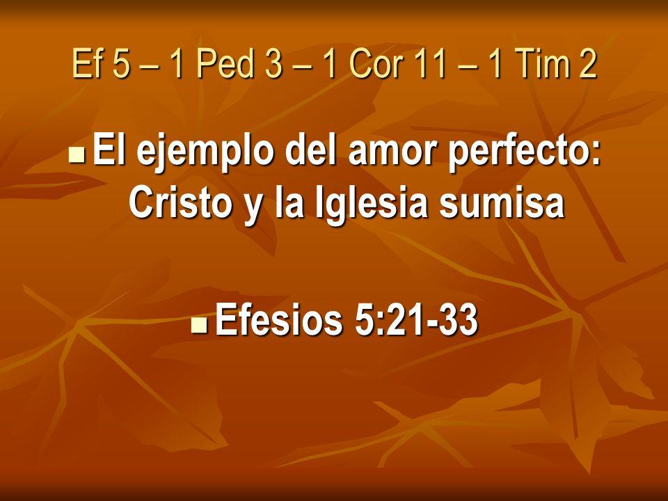 Ef 5 – 1 Ped 3 – 1 Cor 11 – 1 Tim 2 El ejemplo del amor perfecto: Cristo y la Iglesia sumisa El ejemplo del amor perfecto: Cristo y la Iglesia sumisa Efesios 5:21-33 Efesios 5:21-33