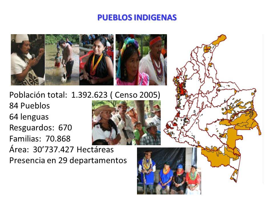 Población total: 1.392.623 ( Censo 2005) 84 Pueblos 64 lenguas Resguardos: 670 Familias: 70.868 Área: 30737.427 Hectáreas Presencia en 29 departamento